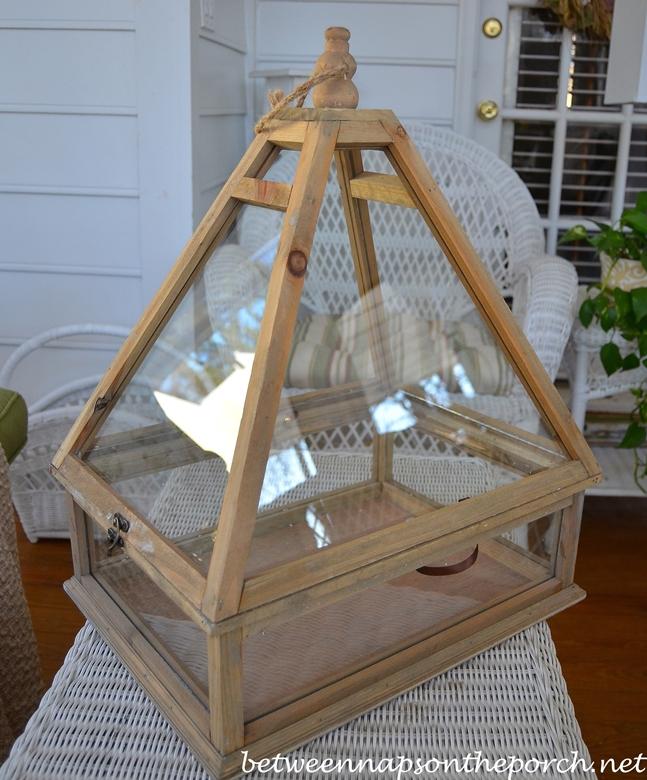 Terrarium Greenhouse