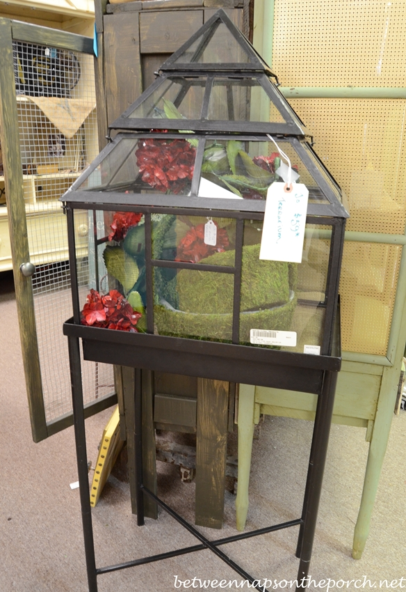 Terrarium on Stand