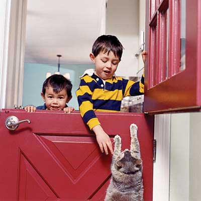 Dutch Doors Help Contain Pets