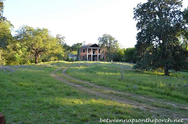 Arlington, Historic Home in Natchez, Mississippi 4