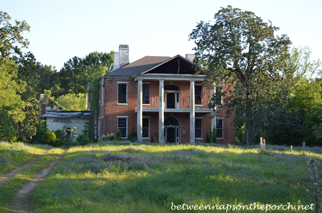 Arlington, Historic Home in Natchez, Mississippi 5