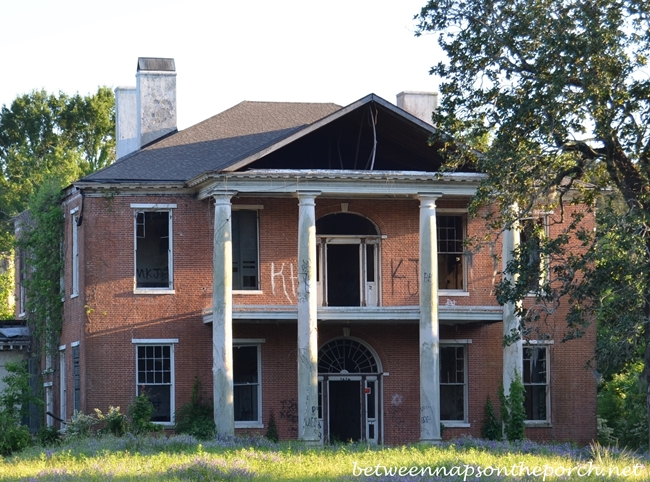 Historic arlington home to raccoons now for Antebellum homes