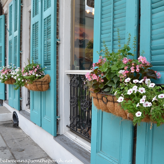 Turquoise Blue Shutters in New Orleans 5