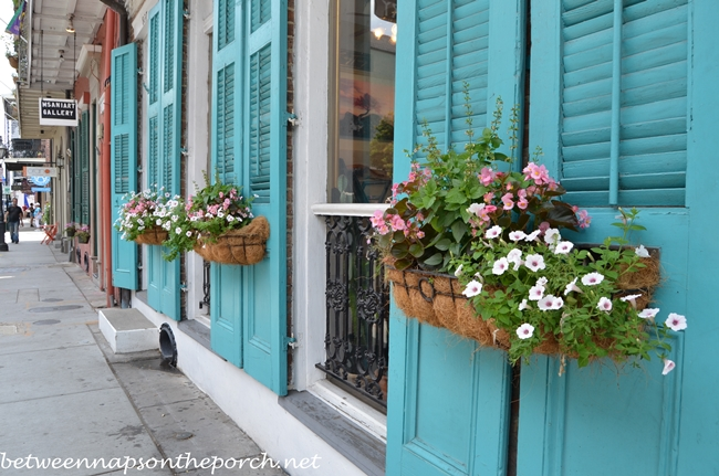 Turquoise Blue Shutters in New Orleans 6