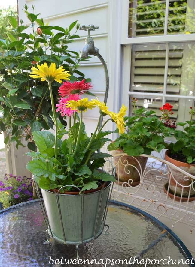 Whimsical Planter with Gerbera Daisies