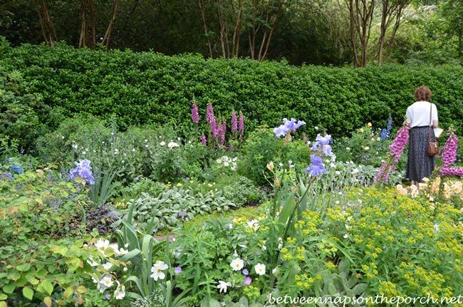Atlanta Botanical Garden, Gardens for Connoisseurs Tour 05