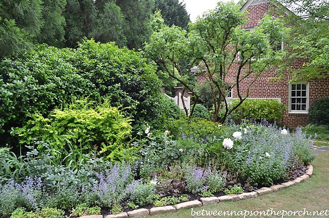 Atlanta Botanical Garden, Gardens for Connoisseurs Tour