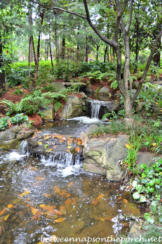 Atlanta Botanical, Gardens for Connoisseurs Garden Tour 02