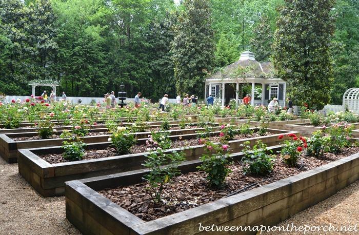 Atlanta Botanical, Gardens for Connoisseurs Garden Tour 09