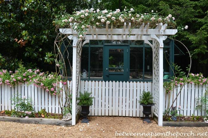 Atlanta Botanical, Gardens for Connoisseurs Garden Tour 11