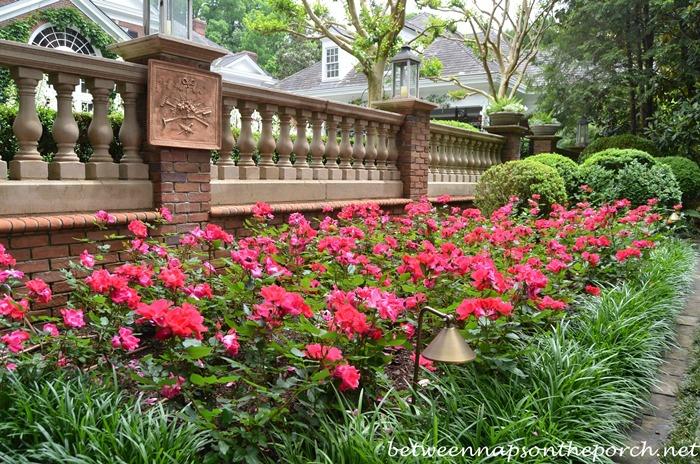 Atlanta Botanical, Gardens for Connoisseurs Garden Tour 14