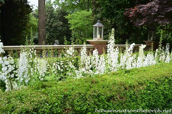 Atlanta Botanical, Gardens for Connoisseurs Garden Tour 16