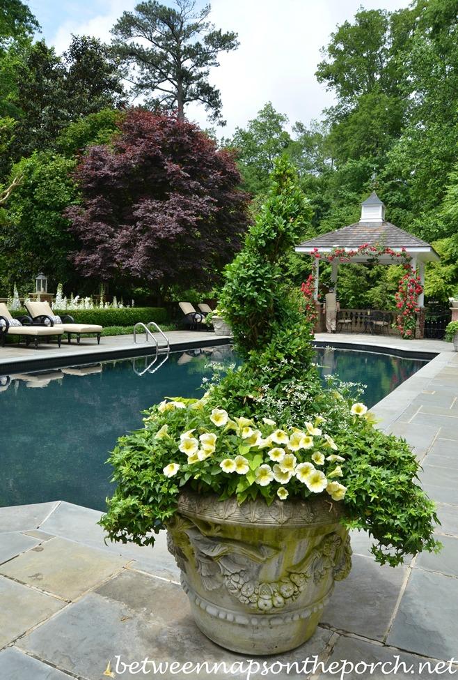 Atlanta Botanical, Gardens for Connoisseurs Garden Tour 18