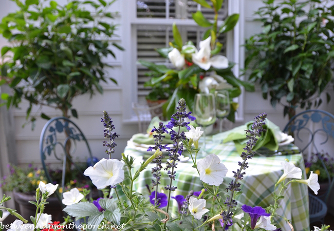 Flowers for Summer Dining