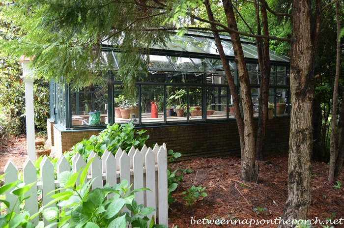 Greenhouse in the Garden, Gardens for Connoisseurs Garden Tour