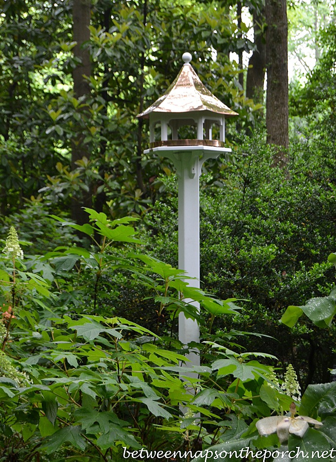 Lazy Hill Carousel Bird Feeder