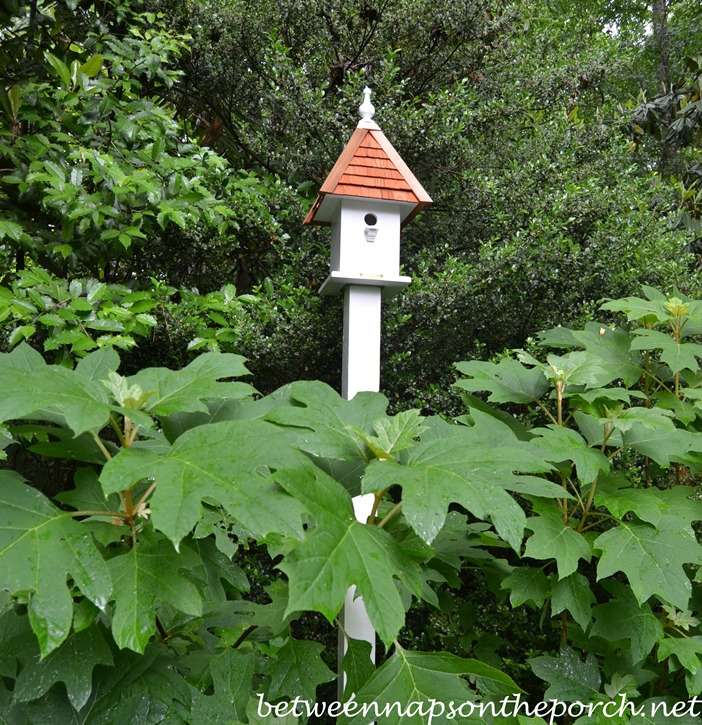 Lazy Hill Loretta Bird House