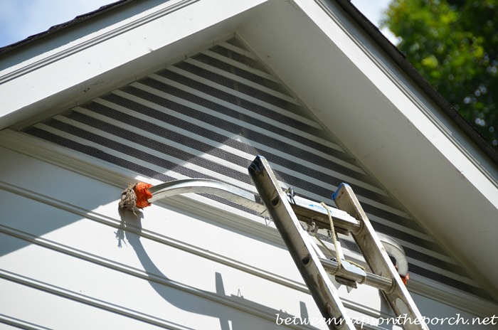 In Floor Garage Ventilation : Keep bats out of the attic by screening over gable windows