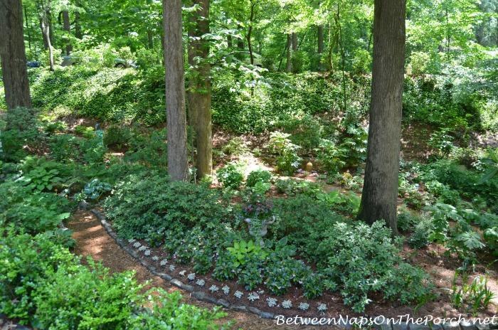 Beautiful Shade Garden (2)