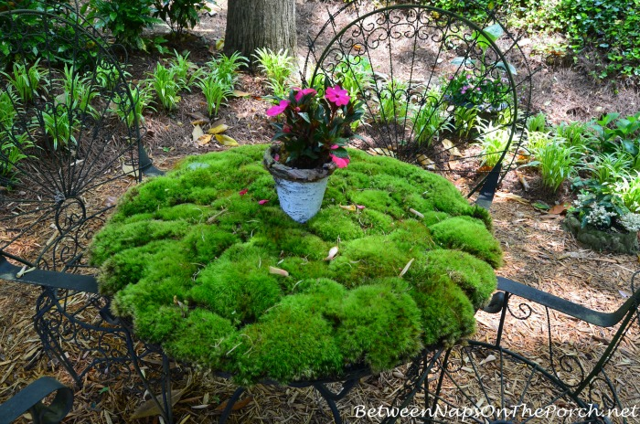 A Garden Amp Moss Table Setting Tablescape