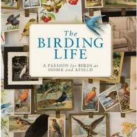 In The BNOTP Library: The Birding Life