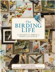 The Birding Life by Laurence Sheehan