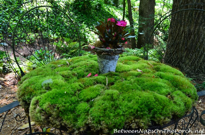 Whimsical Moss Table