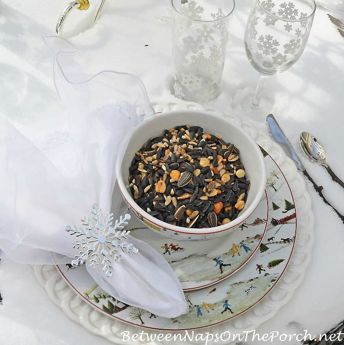WintryThemed Table Setting with Bird Seed for the Birds