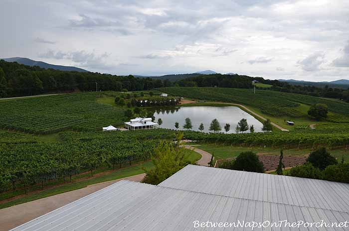 Frogtown Vineyards Dahlonega Georgia