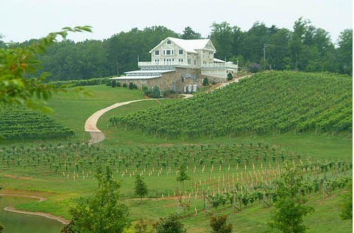 Frogtown Vineyards