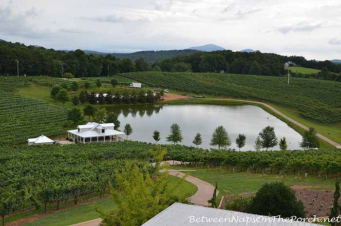 Frogtown Winery in Dahlonega