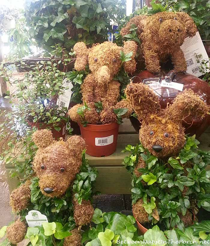 Garden Accent and Topiaries9