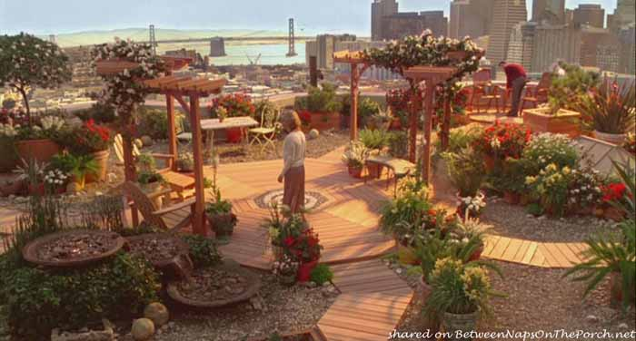 Just Like Heaven Movie Rooftop Garden