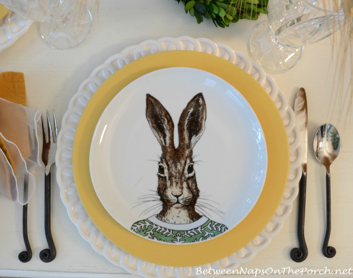 Rabbit Dapper Animals Salad Plate_wm