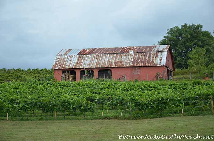 Red Barn, Three Sisters Vineyard Dahlonega Georgia