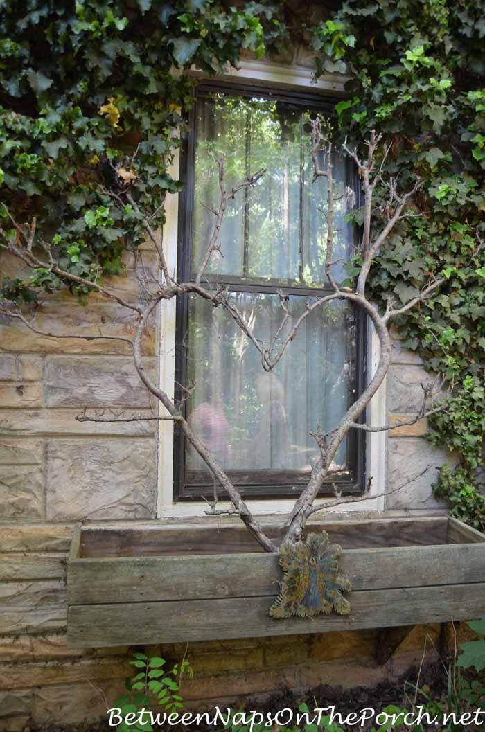 Rustic Window Boxes in Ryan Gainey's Garden