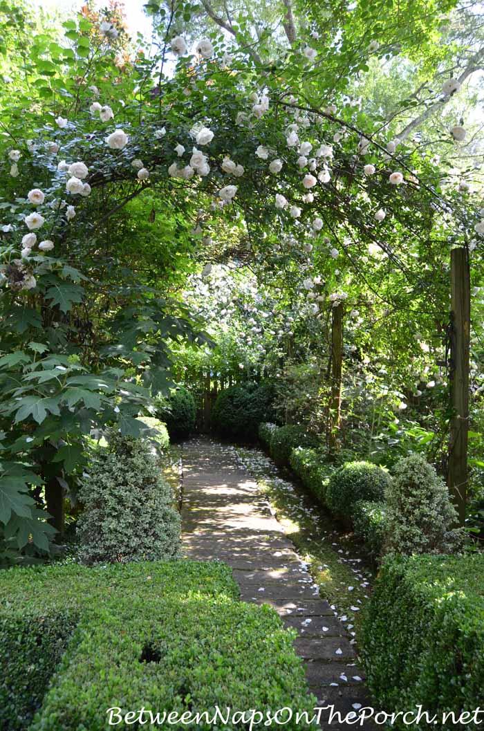 Ryan Gainey's Garden