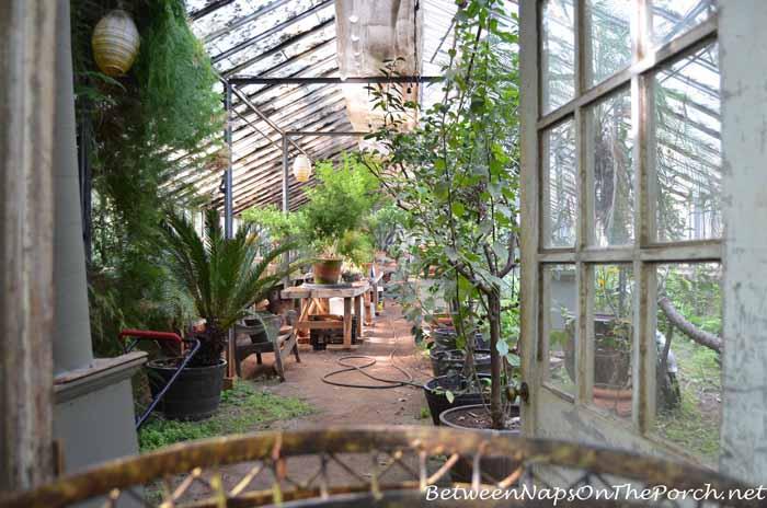 Ryan Gainey's Greenhouse