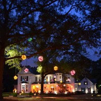 Halloween Fantasy In Lights