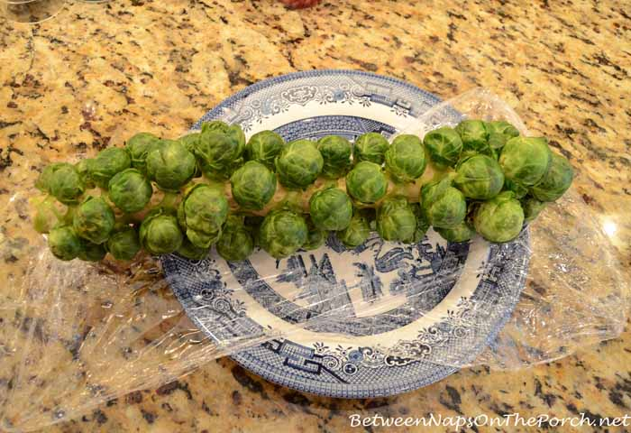 Preparing to Roast Brussels Sprouts on Stalk