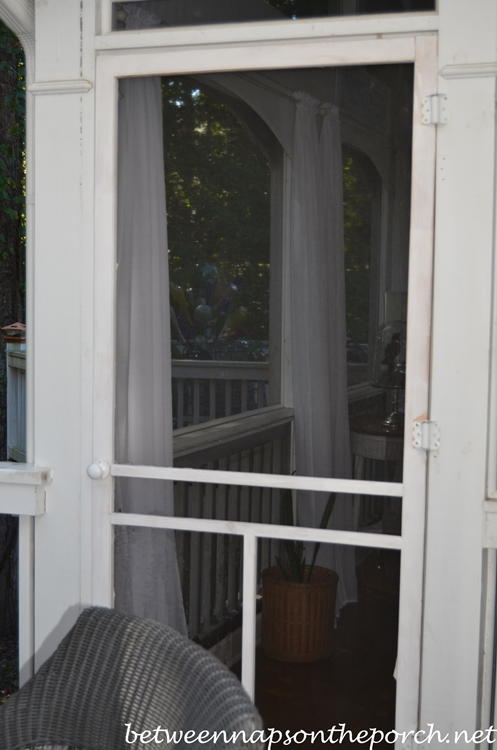 Screened Door needs painting_wm