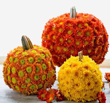 Decorate Your Pumpkin With Fall Flowers