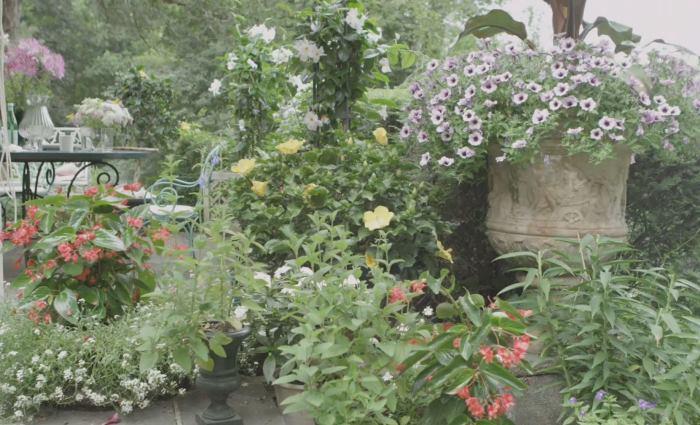 Garden of John Richardson