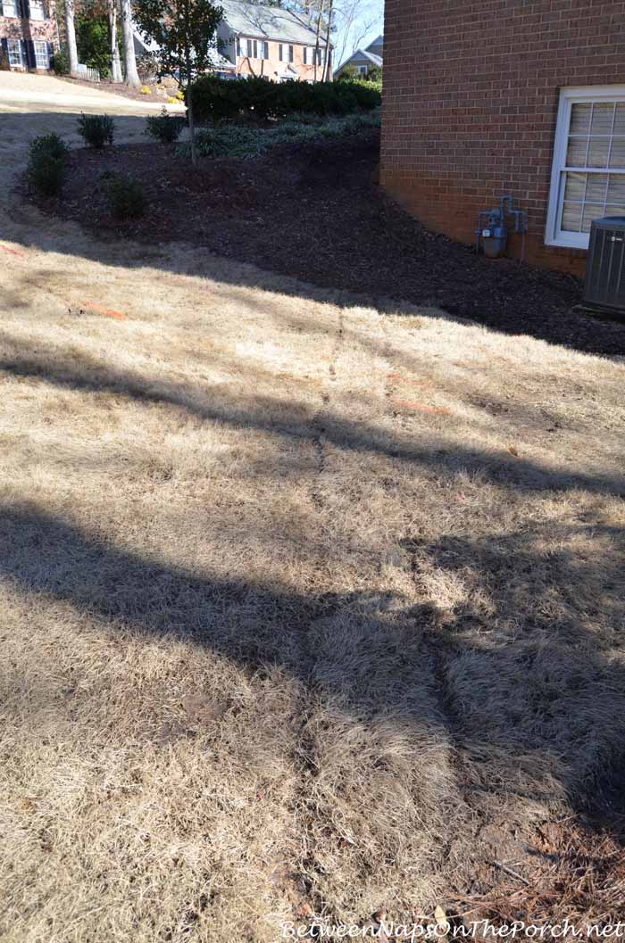 Preparing The Yard For Landscaping