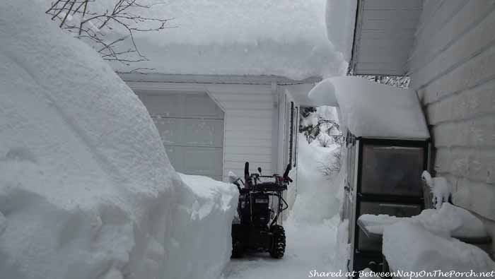 5 Feet of Snow in Kitimat British Columbia Canada 1