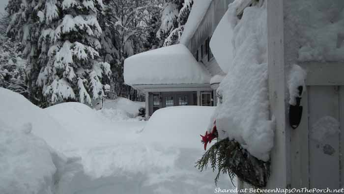 5 Feet of Snow in Kitimat British Columbia Canada 4