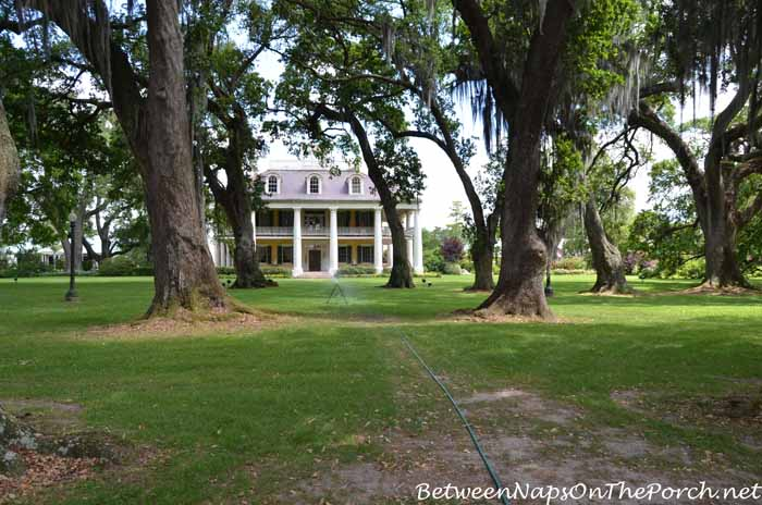 Houmas House Plantation 3