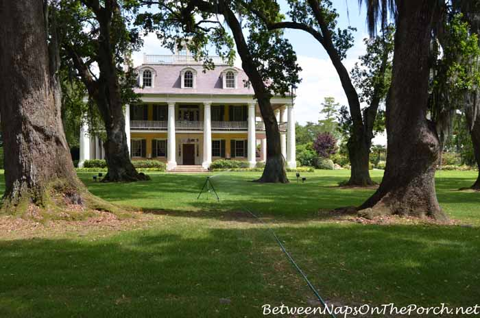 Houmas House Plantation 4