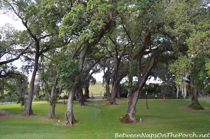 Houmas House Plantation Gardens 02