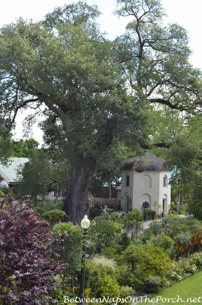 Houmas House Plantation Gardens 05